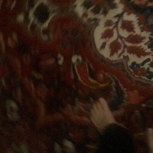 فروش فرش ۱۲ متری دستباف بختیاری