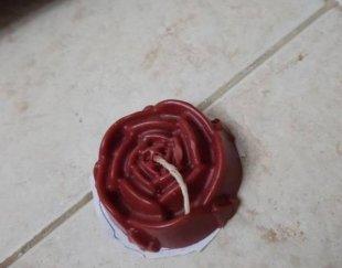 شمع گل رز و تنه درخت
