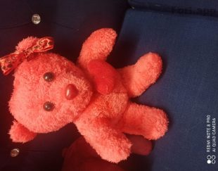 عروسک خرسی