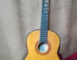 گیتار سی۴۰