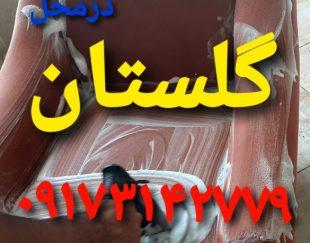 مبلشویی مبل شویی قالیشویی گلستان شیراز