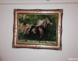 تابلو فرش اسب فروشی