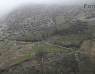 زمین مسکونی و کشاورزی با ۵۰ درخت پالونیا پولساز