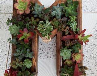 باغچه عمودی و گلدان های سبز
