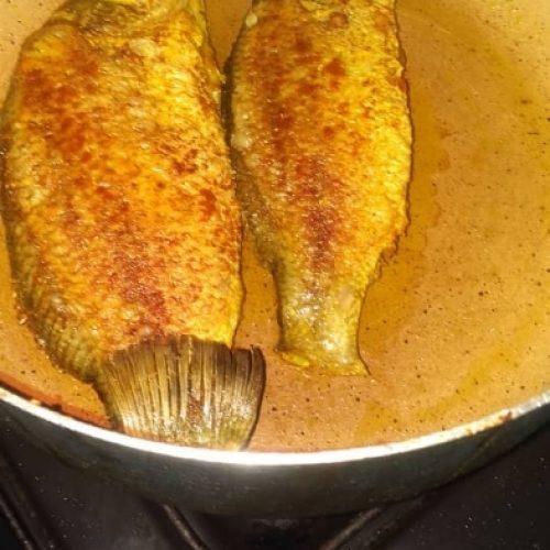 پخش و عرضه ی ماهی سیباس بهصورت عمده و خرده فروشی به سراسر ایران با نازل ترین قیمت و تضمین کیفیت و تازگی