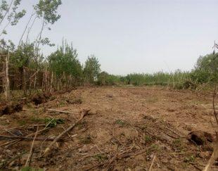 زمین مسکونی گیلان برآسفالت مناسب ساخت