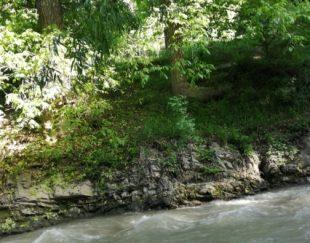 باغچه ۳۵۰متری دردماوند جابان