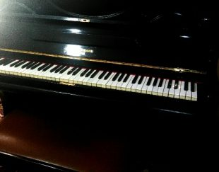 پیانواگوستیک دبلیوهارتمن برلین