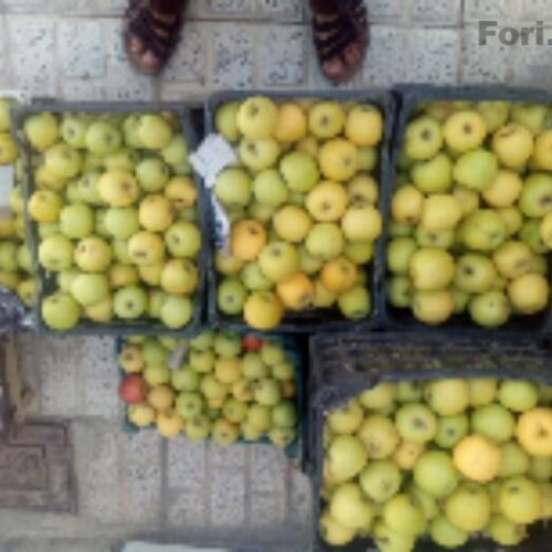 سیب تازه لبنانی