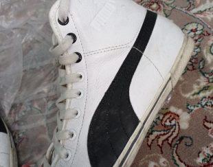 کفش پوما