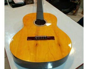 گیتار درخواستی