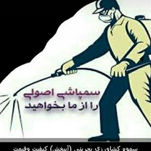 سمپاشی صددرصد تضمینی تمامی نقاط تهران