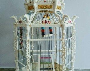 قفس سلطنتی RoYAL CAGE