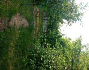 باغ ویلا ۱۰۰۰متری ملکی با استخر و آب مدار، و امتیازات