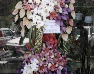 گل اسپرینگ