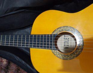 گیتارویولت