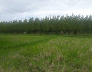 زمین باغات بادرخت ۸۰۰متر مجوز ساخت هم داره