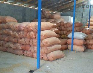 فروش سبوس برنج یا کبک
