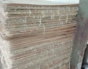 چوب لایه ۲میل صنوبر جهت تولید۳لای