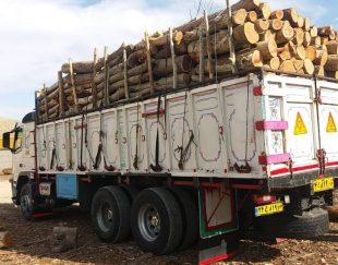 خرید انواع چوب (تامین کننده شرکت)