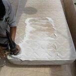 اعزام نیروی نظافتی/خدماتی/قالیشویی/مبل شویی در محل