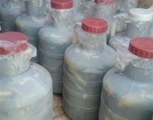 فروش ۱۰۰ دبه خیار شور خانگی با طعم و کیفیت خوب