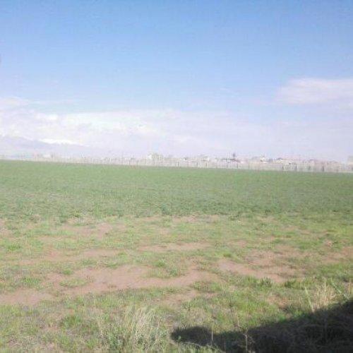۵۰۰۰۰۰ متر زراعی و گاوداری