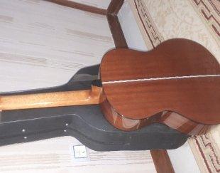 گیتار بست فان