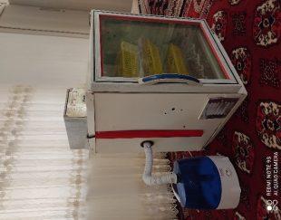 دستگاه جوجه کشی۱۲۶ عددی و دستگاه رطوبت ساز