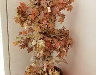 گل درختی پاییزی