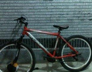 دوچرخه حرفه ای