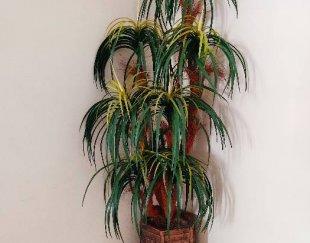 درختچه نخل مصنوعی با گلدان هخامنشی