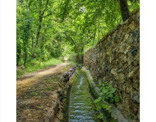 باغچه منطقه توریستی بوژان نیشابور