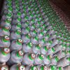 خیارشور ترشیجات زیتون