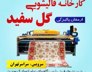 قالیشوی