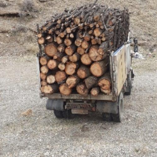 خرید و فروش چوب