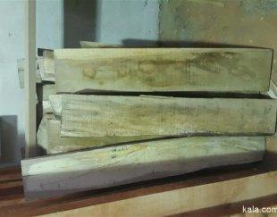 چوب توسکا جنگلی