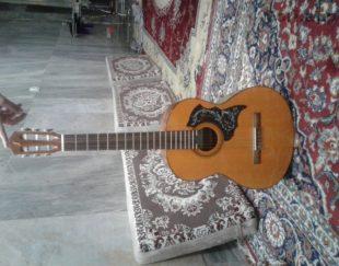 گیتار Fernando FG120
