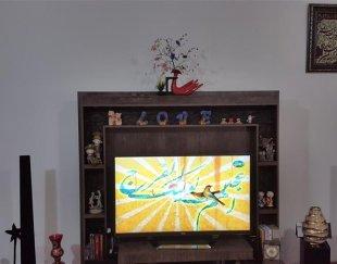 زیر تلویزیونی