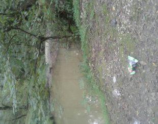 فروش زمین وصل به جنگل و رودخانه خارج از بافت