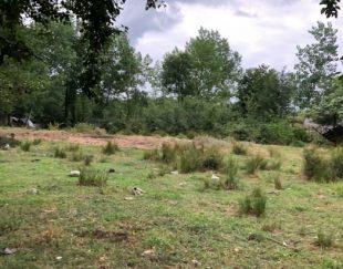 فروش ۵۰۰متر زمین کاربری مسکونی و باغی