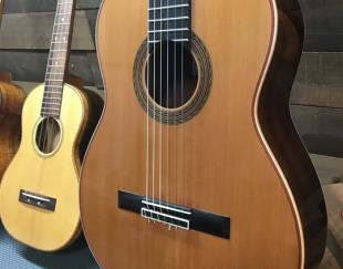 آموزش تضمینی و تخصصی گیتار