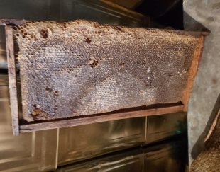 عسل فروشی سالار