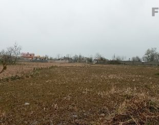 زمین کشاورزی دوبر بر اسفالت _به متراژ ۶۰۰۰مترمربع